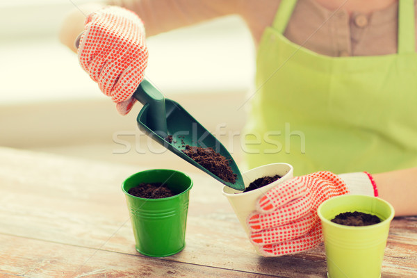 close up of woman hands with trowel sowing seeds Stock photo © dolgachov