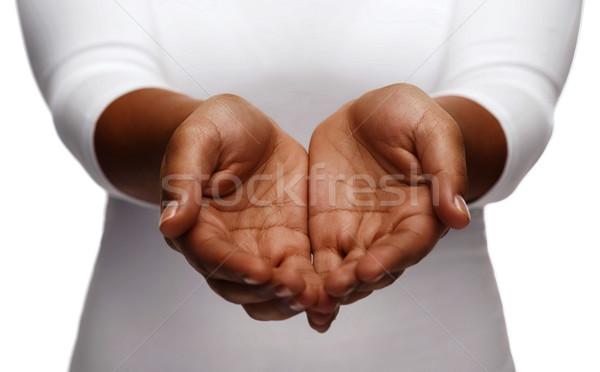 female empty cupped hands showing something Stock photo © dolgachov