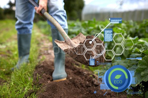 Férfi ásó kert ágy farm organikus Stock fotó © dolgachov