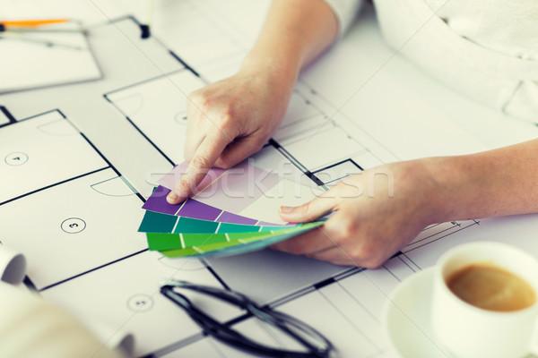 Mains couleur palette plan affaires Photo stock © dolgachov