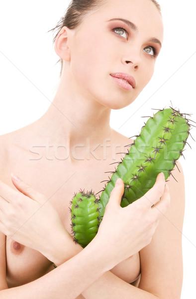 cactus games Stock photo © dolgachov