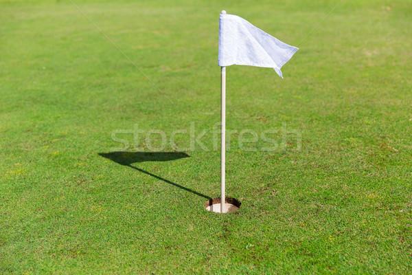 Vlag gat golf veld Stockfoto © dolgachov