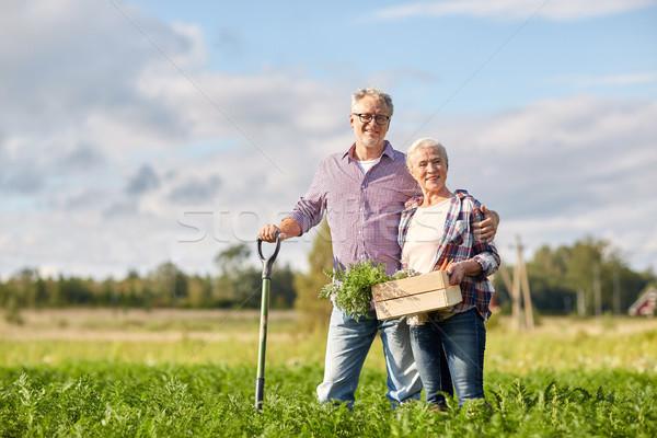 Starszy para łopata marchew gospodarstwa ogrodnictwo Zdjęcia stock © dolgachov