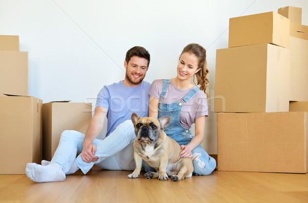 Stok fotoğraf: Mutlu · çift · kutuları · köpek · hareketli · yeni · ev