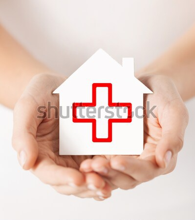 hands holding house with donor sign Stock photo © dolgachov