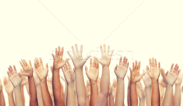 Umani mani gesto parti del corpo uomo Foto d'archivio © dolgachov