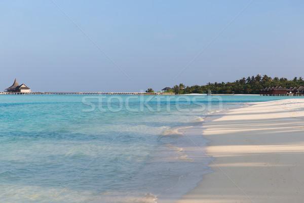 Maldivler ada plaj hurma ağacı villa seyahat Stok fotoğraf © dolgachov