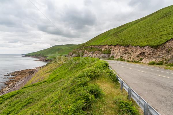 asphalt road at wild atlantic way in ireland Stock photo © dolgachov