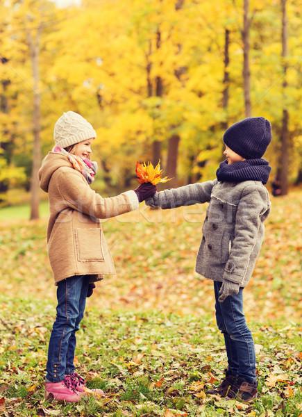 Lächelnd Kinder Herbst Park Kindheit Jahreszeit Stock foto © dolgachov