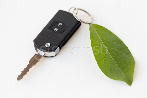 close up of car key and green leaf Stock photo © dolgachov