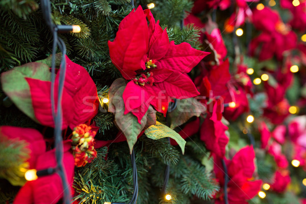 close up of christmas tree with floral decorations Stock photo © dolgachov