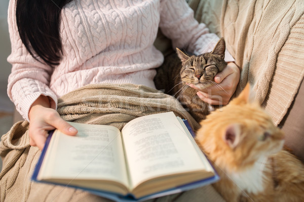 red and tabby and owner reading book at home Stock photo © dolgachov