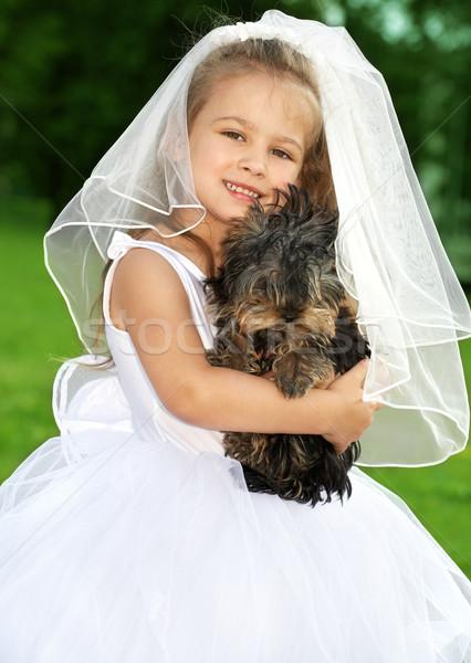 Pequeño dama de honor cute perro Foto boda Foto stock © dolgachov