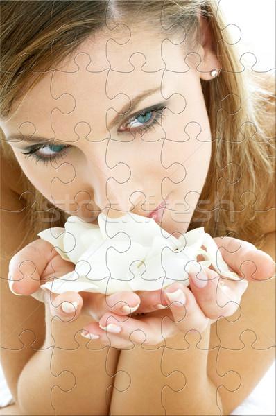Rozenblaadjes puzzel vrouw spa witte lichaam Stockfoto © dolgachov