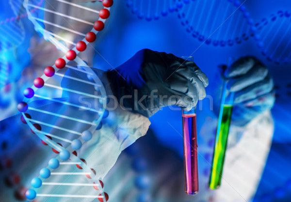 close up of scientist making test in laboratory Stock photo © dolgachov