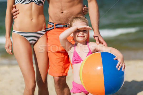 家族 インフレータブル ボール ビーチ 幼年 ストックフォト © dolgachov