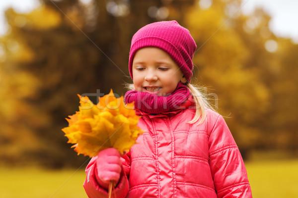 Photo stock: Heureux · belle · petite · fille · portrait · extérieur · automne