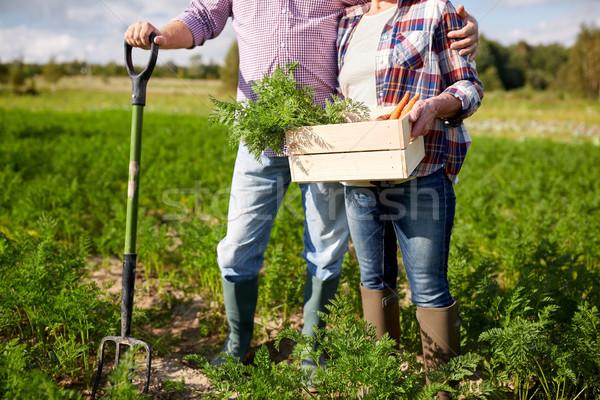 Pareja de ancianos pala zanahorias granja Foto stock © dolgachov