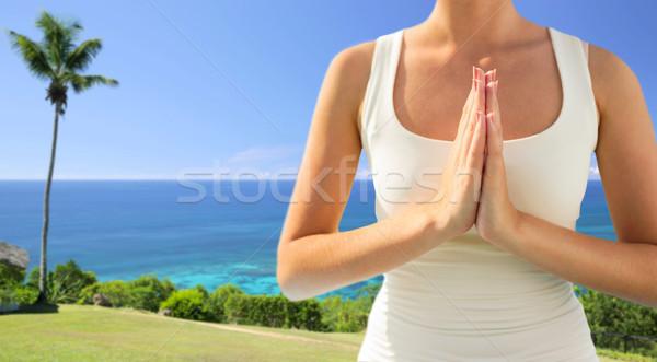 Közelkép nő jóga kint emberek namaste Stock fotó © dolgachov