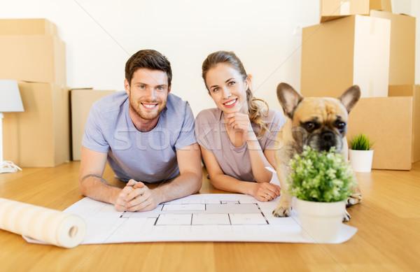 Paar dozen blauwdruk hond nieuw huis hypotheek Stockfoto © dolgachov