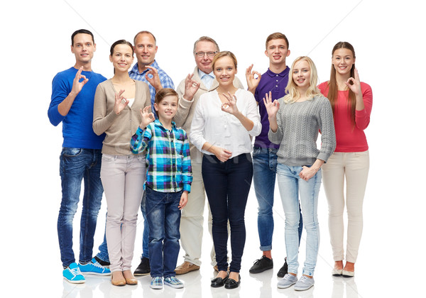 group of smiling people showing ok hand sign Stock photo © dolgachov
