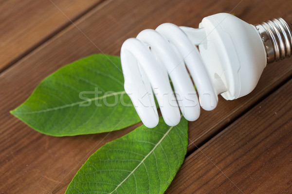 close up of energy saving lightbulb and green leaf Stock photo © dolgachov