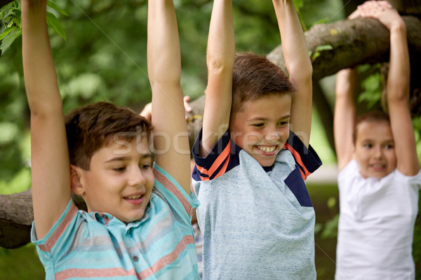 close up of kids hanging on tree in summer park Stock photo © dolgachov
