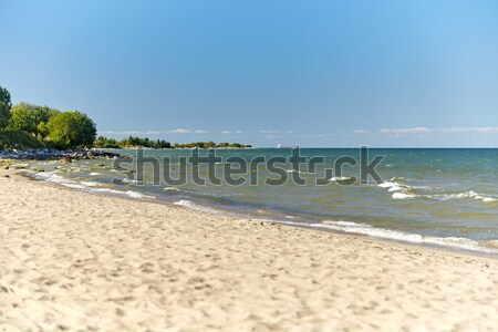 baltic sea beach Stock photo © dolgachov