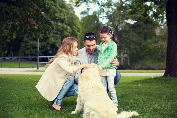 счастливая семья Лабрадор ретривер собака парка семьи ПЭТ Сток-фото © dolgachov