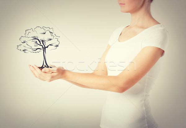 woman with small tree in her hands Stock photo © dolgachov