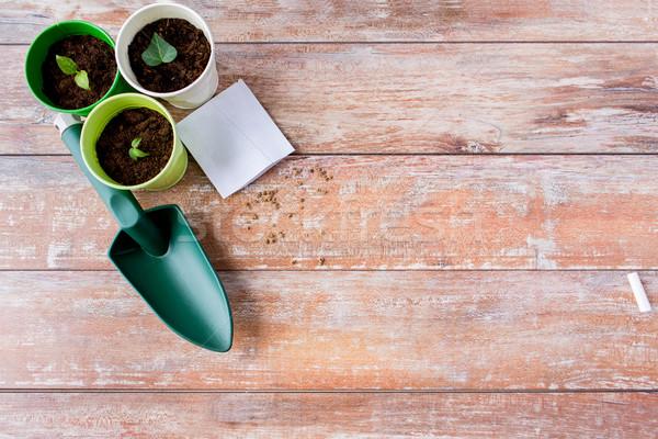 close up of seedlings, trowel and seeds Stock photo © dolgachov