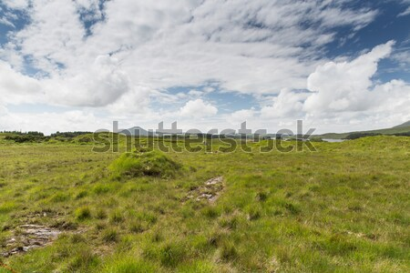 view to plain and lake at connemara in ireland Stock photo © dolgachov