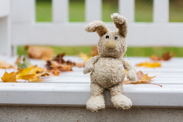 toy rabbit on bench in autumn park Stock photo © dolgachov