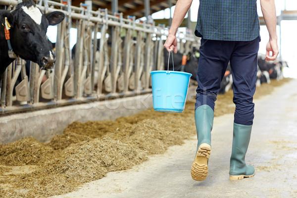 Człowiek wiadro spaceru mleczarnia gospodarstwa rolnictwa Zdjęcia stock © dolgachov