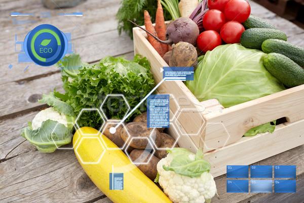 close up of vegetables on farm Stock photo © dolgachov