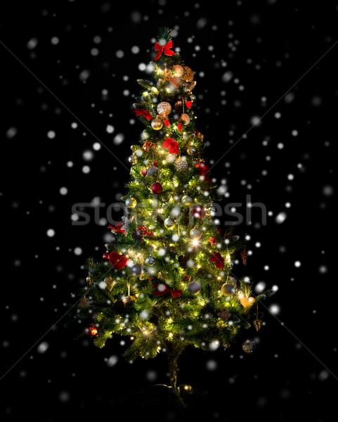 beautiful decorated and illuminated christmas tree Stock photo © dolgachov