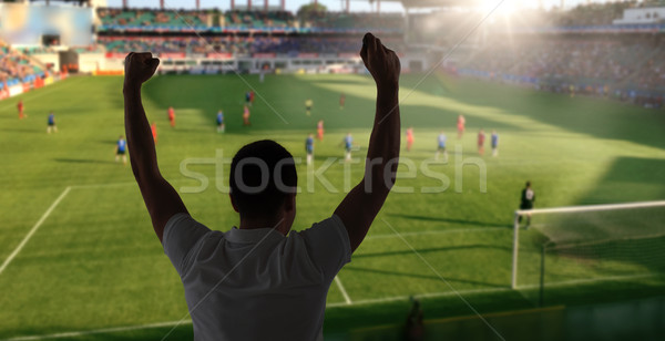 man watching soccer of football game on stadium Stock photo © dolgachov
