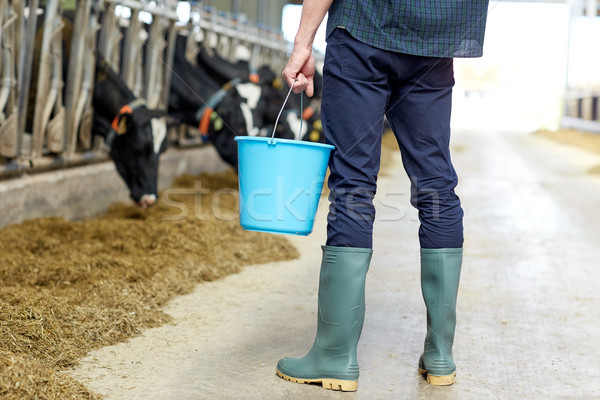man with bucket in cowshed on dairy farm Stock photo © dolgachov