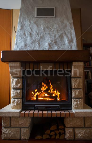 Zdjęcia stock: Palenie · ognisko · domu · ogrzewania · ciepło