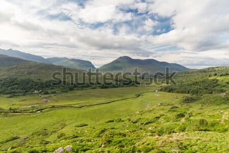 Râu parc vale Irlanda natură peisaj Imagine de stoc © dolgachov