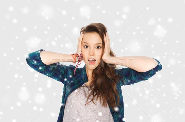 Cabeça neve inverno natal Foto stock © dolgachov