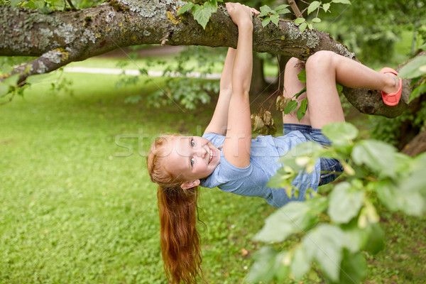 happy little girl hanging on tree in summer park Stock photo © dolgachov
