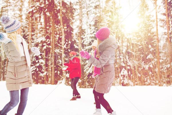 幸せ 友達 演奏 雪玉 冬 森林 ストックフォト © dolgachov