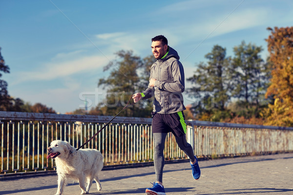 happy man with labrador dog running outdoors Stock photo © dolgachov