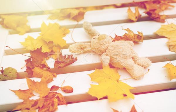 toy rabbit on bench in autumn park Stock photo © dolgachov