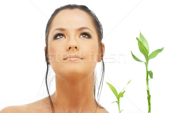 брюнетка бамбук ярко фотография женщину лице Сток-фото © dolgachov