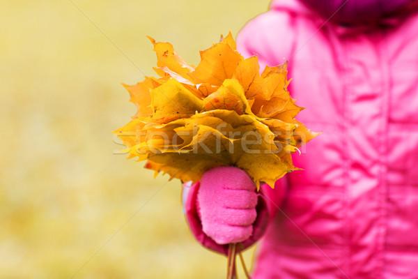 Közelkép lány juhar levelek köteg kint Stock fotó © dolgachov