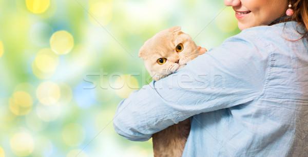happy woman holding scottish fold cat over green Stock photo © dolgachov