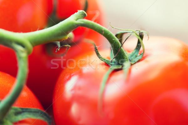 Olgun sulu kırmızı domates diyet Stok fotoğraf © dolgachov