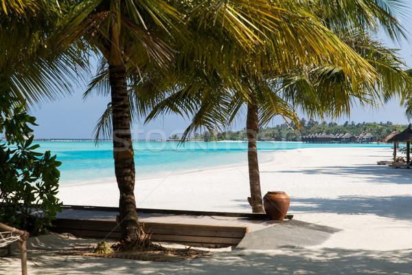 バンガロー 海 水 エキゾチック リゾート ビーチ ストックフォト © dolgachov
